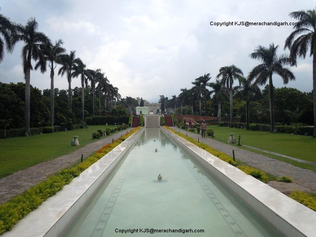Pinjore Garden3